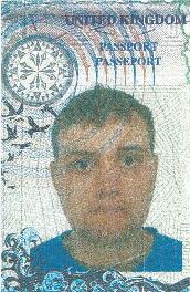 英国本科外教wj33325567